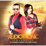 Audiotronic Vol.12 Mp3 Songs